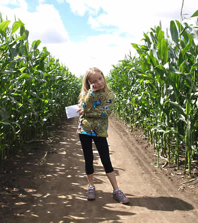 Easingwold Maize Maze attractions